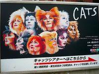 Catsposter1